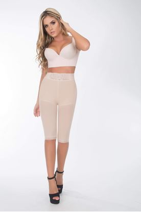 Picture of 6102 Garment shorts only